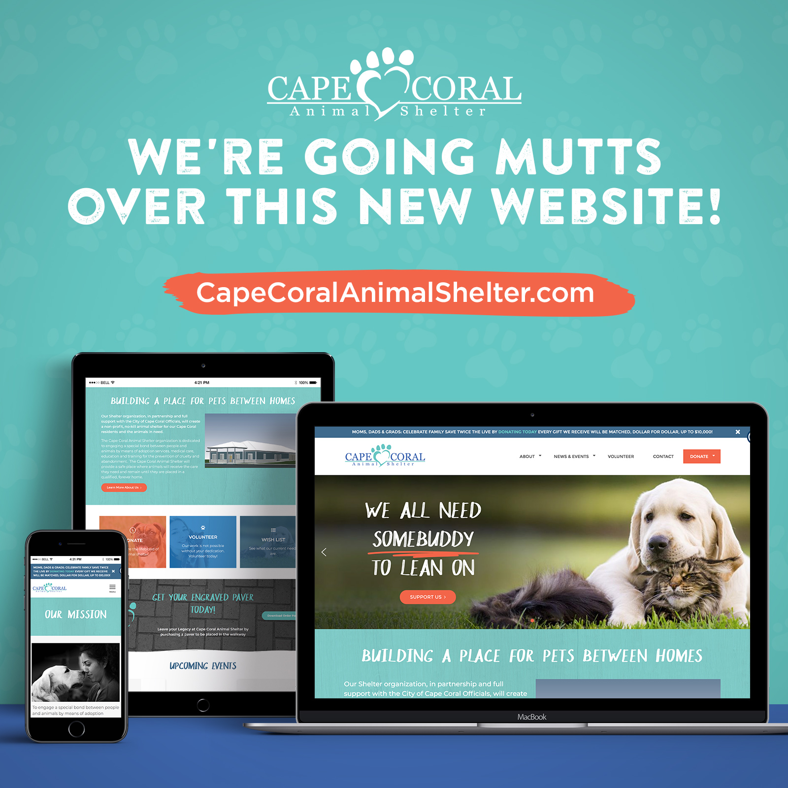 New Web Site Launched for Cape Coral Animal Shelter
